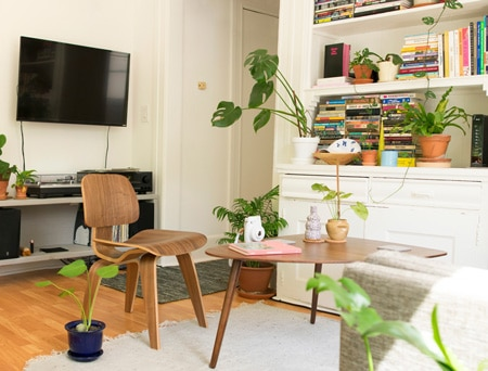 Best ways to add humidity in your home