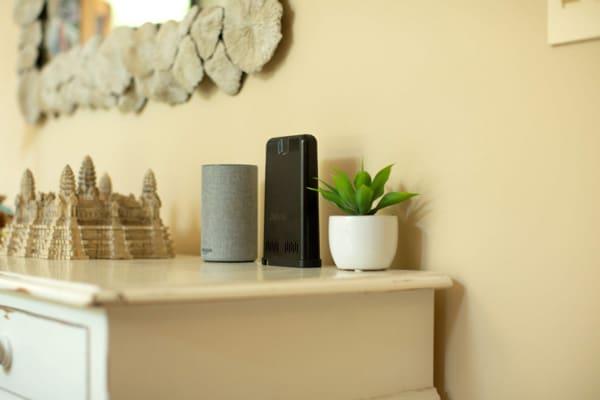 Davis Instruments Weather Link Live and Amazon Echo